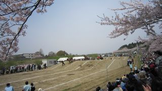 東北輓馬競技大会