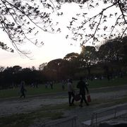 春は花見、湘南ベルマーレの試合時は様々なイベントが