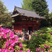 根津神社で開催
