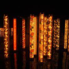 綺麗な光が並びます