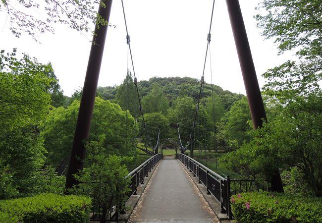 緑豊かな整備された公園