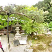 見落としがちな、南禅寺裏の寺