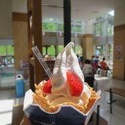 生クリーム風味の絶品ソフトクリーム♪