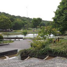 兵庫県立三木山森林公園で撮影