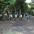 写真:大岡家一族の墓