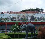 スラバヤ動物園