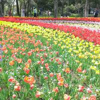 国営木曽三川公園 木曽三川公園センター