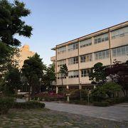 徳成女大キャンパスでございます