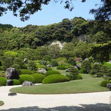 庭が美しい!!米国の日本庭園専門誌で昨年、12年連続日本一に選ばれたそう。