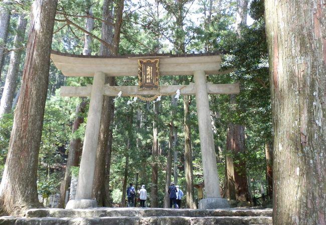 那智大瀧への入口、飛瀧神社の一の鳥居。