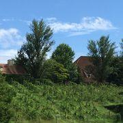 ドイツの田園風景♪