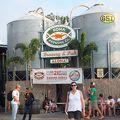 ハワイ島で飲む、地ビールは最高に美味しかった。