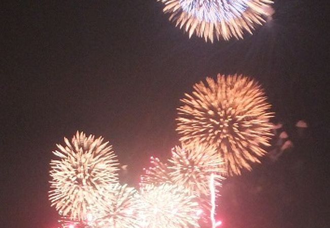 今年も千波湖の花火を楽しみました。