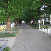 東横線日吉駅の目の前