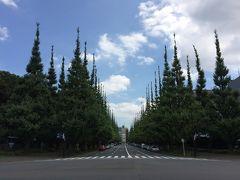 信濃町・千駄ヶ谷のツアー