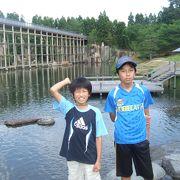 回遊式日本庭園の水景園は見ごたえ十分。