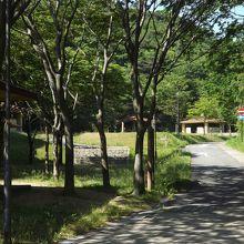 山陰海岸国立公園 part3 (11) 今子浦キャンプ場