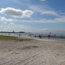 ふなばし三番瀬海浜公園 ふなばし三番瀬環境学習館