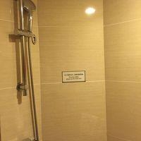 シャワーのみでバスタブはありません。