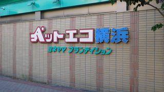 ペットエコ横浜 (都筑店)