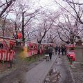 写真:平野神社境内 花見茶屋 遊楽