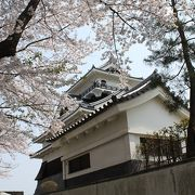 桜の時期は最高です!