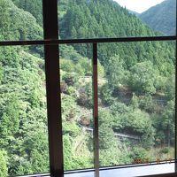 食堂から緑いっぱいの山の景色、 モノライダーの軌道も見える