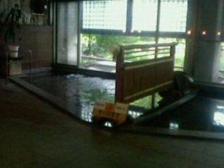 群馬藤岡 森の温泉ホテル 写真