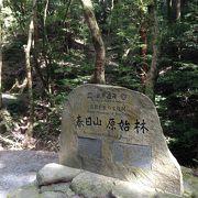奈良の世界遺産