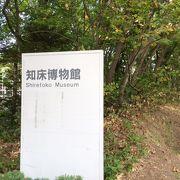 オオジロワシが観察できる博物館