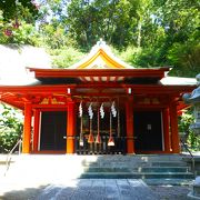 雷神社with公孫樹