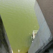 放水口のダム湖側です。湖水が吸い込まれている様子も見えます。