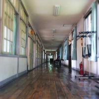 星ふる学校くまの木 写真