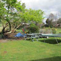 裏庭は、ほとんどこのユニットのプライベート・ガーデン感覚