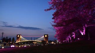 天門橋が環水公園のシンボル