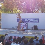 例年文化の日付近の4・5日間に開催される静岡を代表する秋のイベント