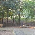 写真:桜塚古墳群