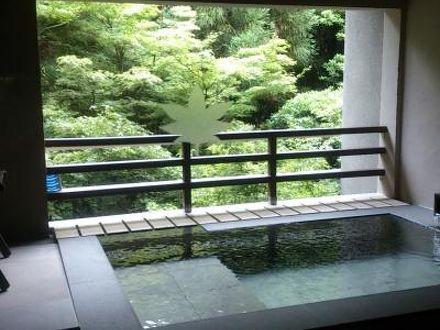 玉名温泉 山もみじの宿 八芳園 写真