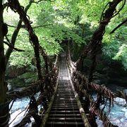 うつくしい渓流に架かる秘境のかずら橋