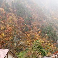 紅葉が美しい