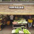 新鮮な野菜類の販売所 ※鹿児島県霧島市