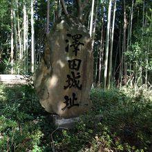 沢田城址 (小林寺)