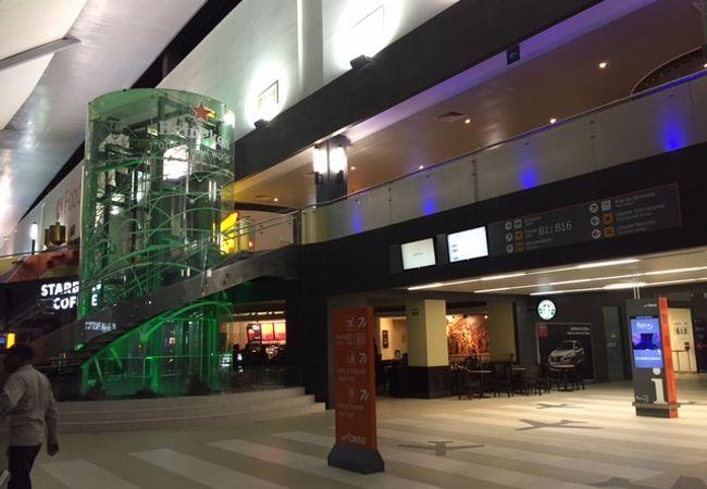 ヘネラル マリアーノ エスコベード国際空港 (MTY)
