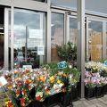 野菜や花が沢山販売されていました