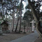 丘の上にある神社