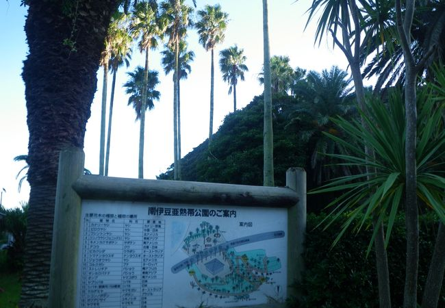 南伊豆亜熱帯公園