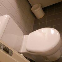 トイレ。水回りも問題なしです。