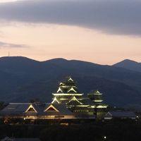 熊本城が見えます