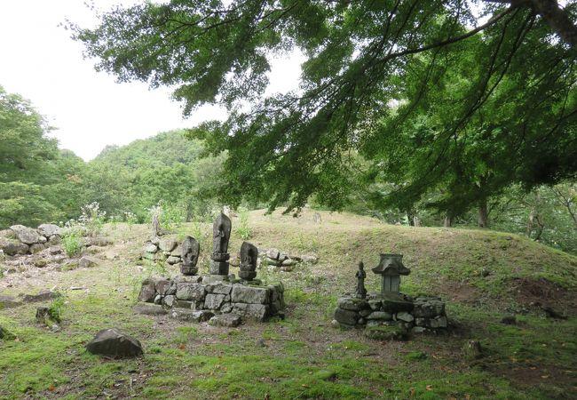 八木城跡(兵庫県養父市)
