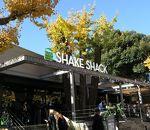 シェイクシャック 外苑いちょう並木